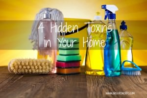 4 Hidden Toxins in Your Home