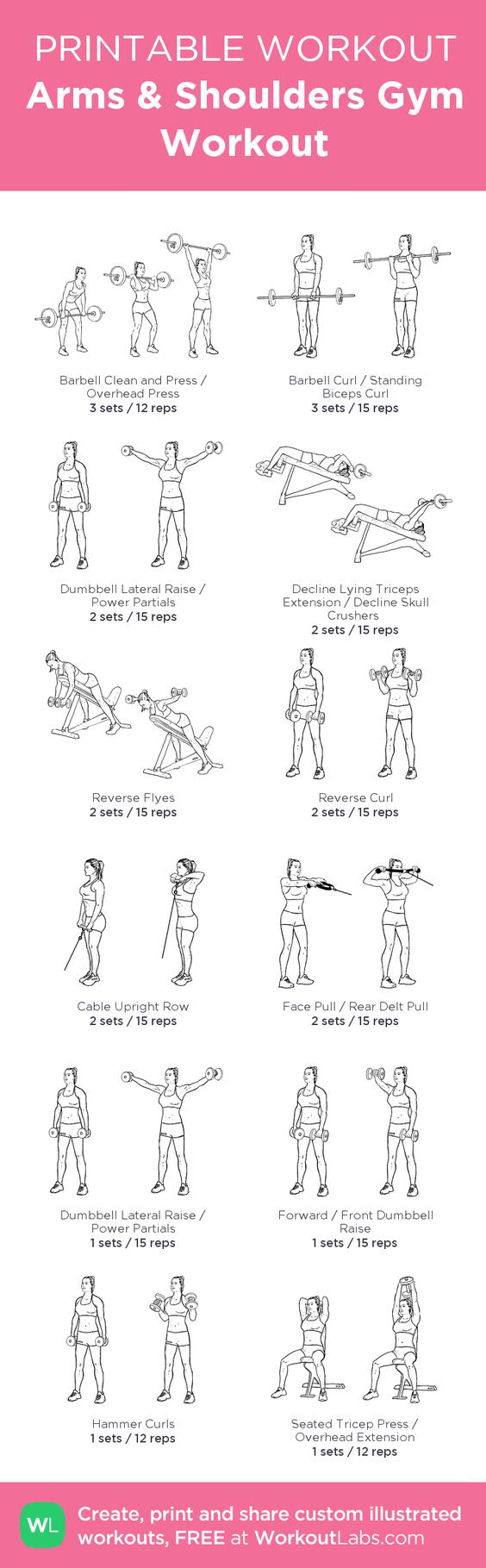 Workout Lab 30 Day Arm Challenge.