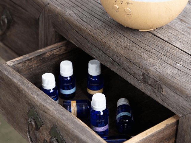 These are the top 6 Essential Oils everyone should have in their home.