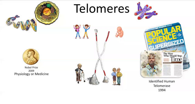 Learn what telomeres are and how the Forever pack can help you.