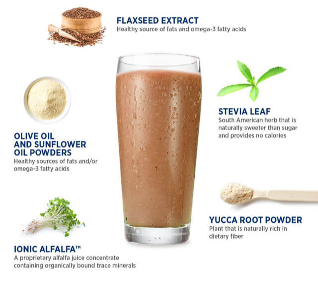 what is in the Isagenix shake